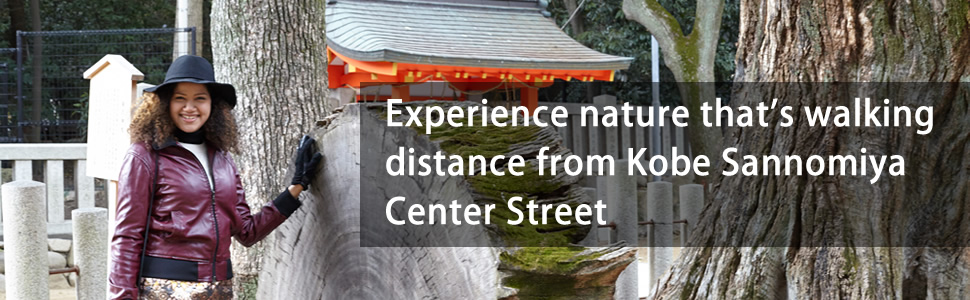 Tours - Kobe Sannomiya Center Gai Shopping Street